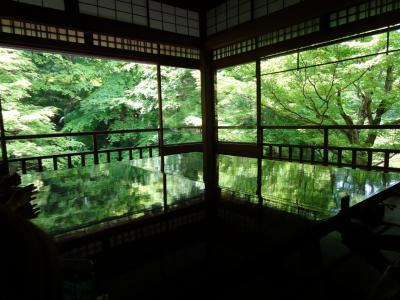 新緑の京都(2) 八瀬 インスタ映え 光明寺瑠璃光院へ