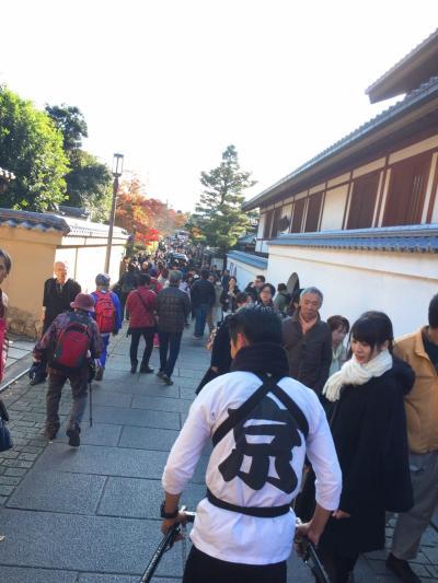 レンタル着物、人力車で京都満喫。母娘。