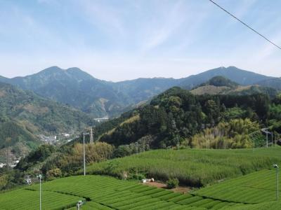 静岡市内をロング縦走 高山―竜爪山