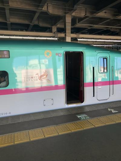 北海道新幹線グランクラス乗車記