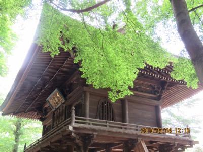 新緑の多福寺を訪問する