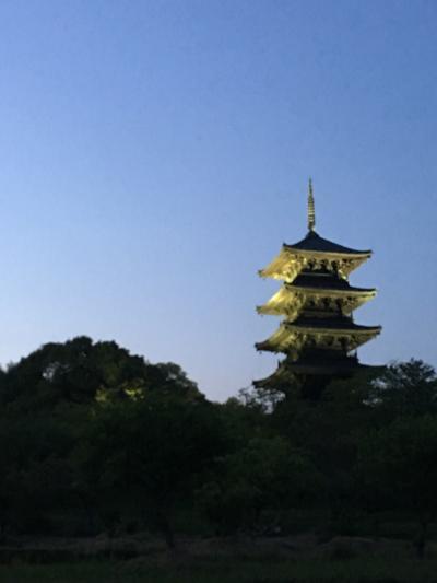 岡山☆夕方の備中国分寺