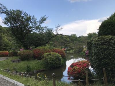 小石川植物園へ行ったら東大アーキテクトが楽しかった