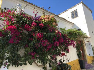 【スペイン・ポルトガルの旅】6.王妃の愛した町オビドス