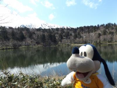 グーちゃん、利尻島へ行く!(姫沼でなべなべの想い出の写真を撮ろう!編)