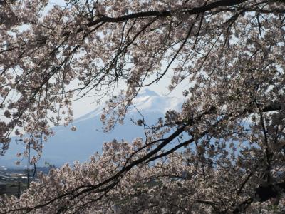 2019GW 東北・北海道旅行記 5.黒石・御幸公園