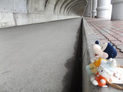 グーちゃん、利尻島へ行く!(稚内公園、鹿さん再び!編)
