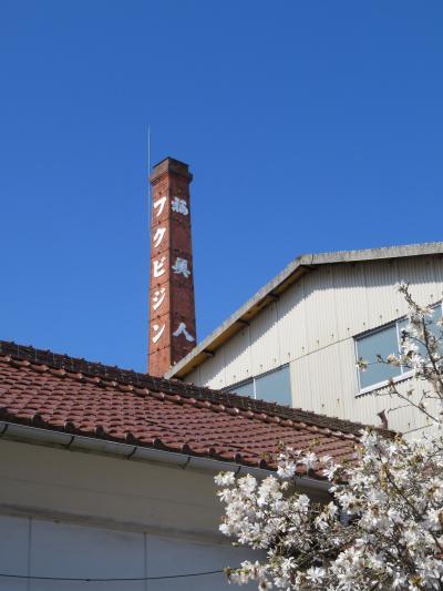 広島大学とその周辺を歩く①(西条酒蔵通り・鏡山公園の桜・二神山のツツジ)