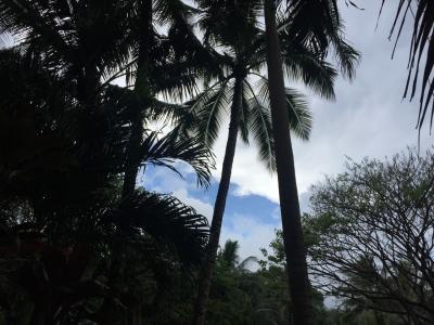オアフ島のマナを感じる旅