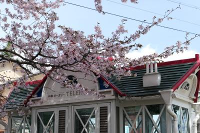春の軽井沢♪ Vol.4:旧軽井沢 ロータリーの桜・チャーチストリート・聖パウロ教会♪