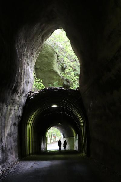 大多喜.市原散策・・大多喜城(続100名城)、チバニアン(地磁気逆転地層)、向山トンネル(2階建てトンネル)を訪ねます。