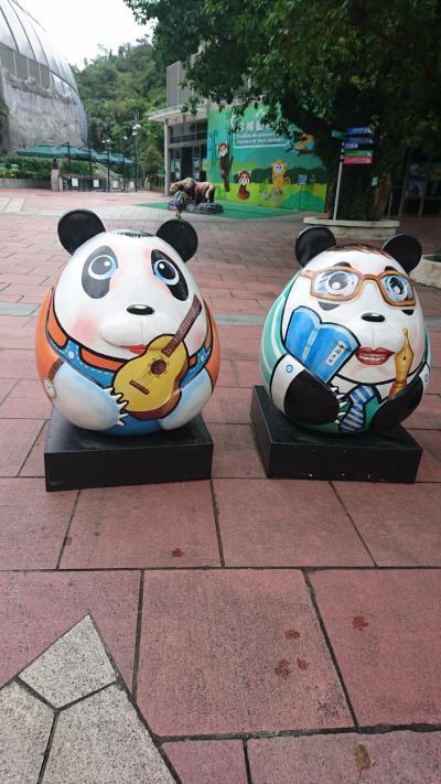 201905,GW庶民家族の香港マカオ旅行(5)パンダは寝ていた,プール,ダンスウォーター,シェラトンマカオ泊