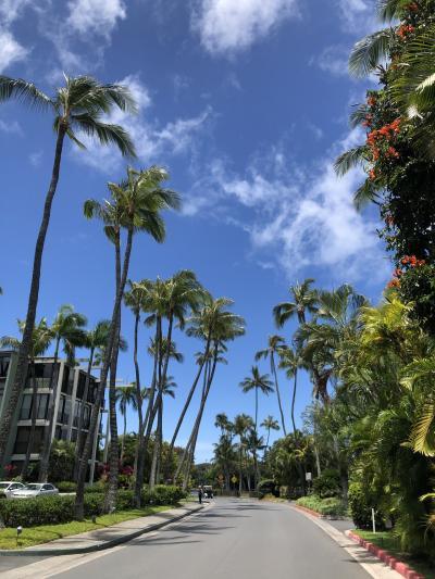 2019年GW ハワイ 後半