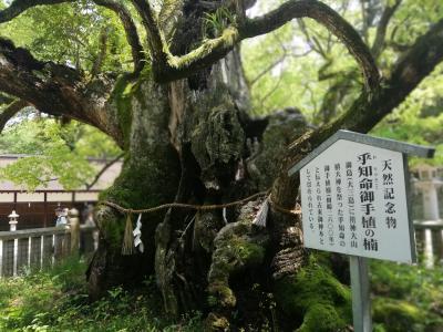 瀬戸内周遊2(尾道~松山)