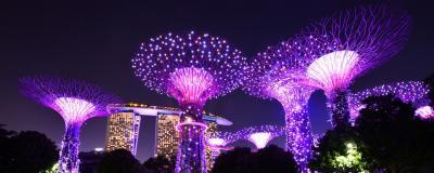 初シンガポール×1人旅