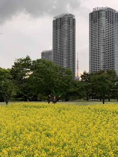 緑の日の都内公園めぐりツァー