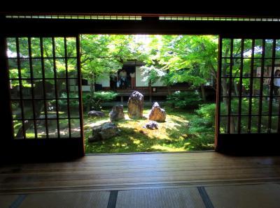 青空と青もみじと静寂に包まれた京都~東福寺・建仁寺を楽しむ