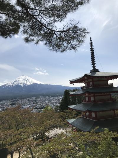 インスタ映え⁈新倉山浅間公園をおさんぽ