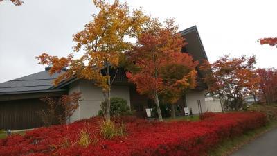 軽井沢は紅葉まっさかり