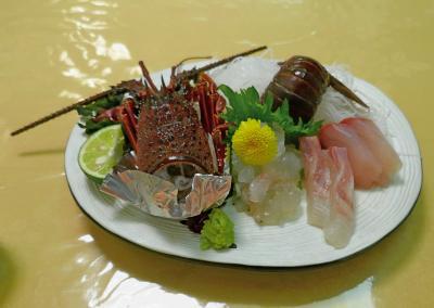 徳島高知ドライブ旅行7-ホテルリビエラししくい,鹿岡の夫婦岩,室戸へ