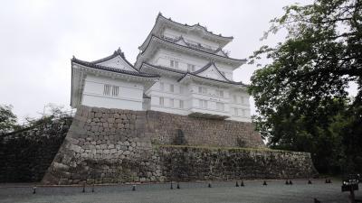 201908神奈川(小田原編)
