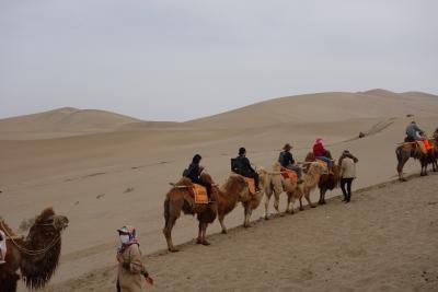 中国西安・敦煌旅行2日目:敦煌で駱駝に乗る