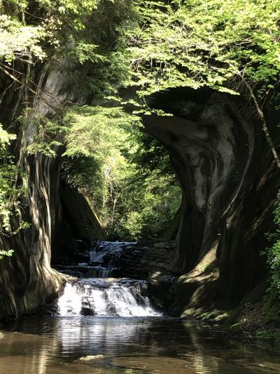 富津公園、濃溝の滝、小湊、千倉そしてアウトレットに娘の家族と一泊旅行
