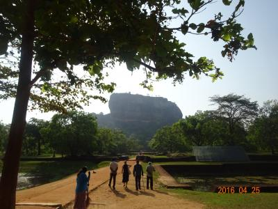 全区間ビジネスクラスで行くスリランカ世界遺産紀行6日間の旅