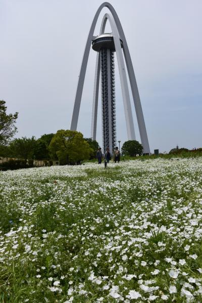 サイクルIN 国営木曽三川公園&各務原オアシスパーク