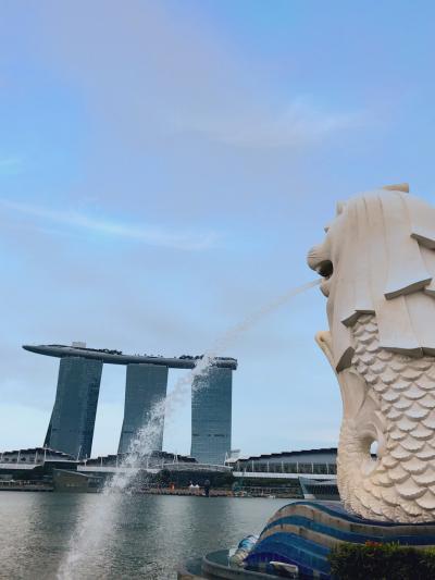 息子6歳GWは憧れのマリーナベイサンズのあるシンガポールで過ごすぞ♡6歳子連れシンガポールの巻