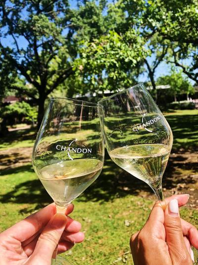 Enjoy Napa Wine!レンタカーなし10ワイナリーと美食 2019GW 3泊5日 その1
