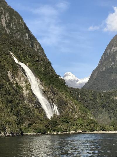 2019年夫婦旅 はじめてのニュージーラド③快晴のミルフォードサウンド、そしてホテルとその周辺