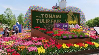 2019'TONAMI TULIPFAIRとなみチューリップフェア