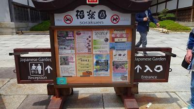神戸市中央区 相楽園のつつじ遊山 その1。
