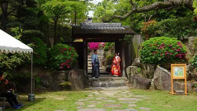 神戸市中央区 相楽園のつつじ遊山 その4完。