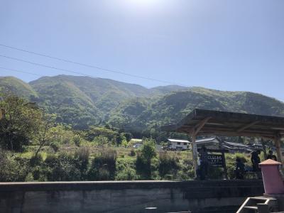 花の百名山 藤原岳に登頂してきました