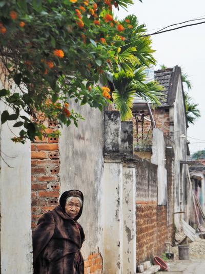 ノーモアベトナム!と連れ合いが呟いた・・・年末年始ハノイ旅⑥ ★古き良き農村の風景・・・ドゥオンラム村★