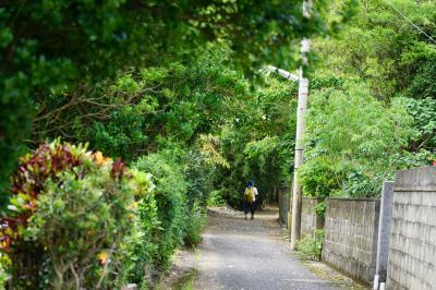 2019奄美の島々めぐる旅5日間vol.2(加計呂麻島)