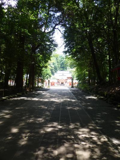 神話の里、高千穂へ 3 高千穂峰と霧島神宮 旧参道で七不思議に遭遇!