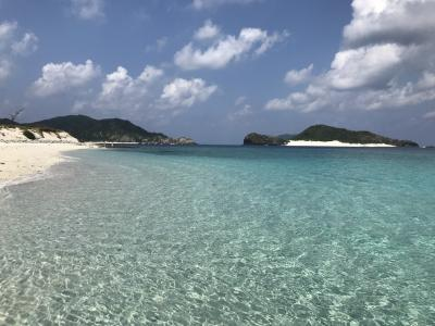 SGWに慶良間諸島シュノーケルざんまいの旅 5日目(結)
