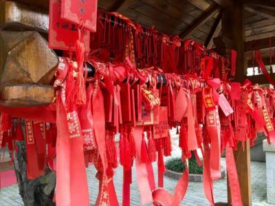 呉の国『上海・無錫・蘇州』のツアー旅②