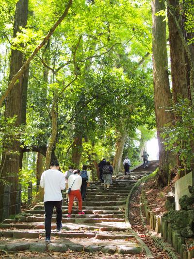成田山新勝寺でお参りして鰻を食べた後は、新緑の成田山公園へ!