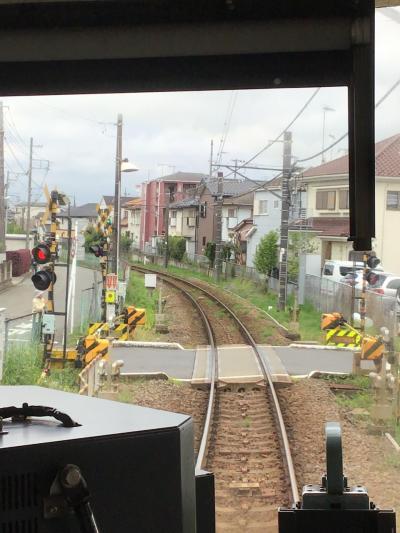 初夏を感じて関東鉄旅          相模大回り編  その2