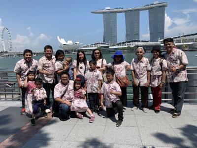 シンガポールの家族旅行~ブギスストリート、噴水ショー、マーライオンパーク編~