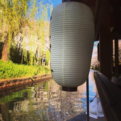 桜満開の十石船