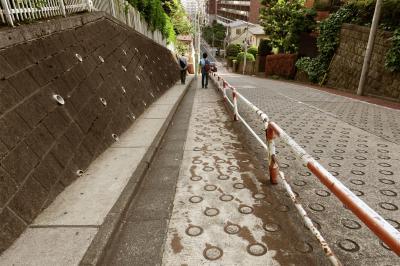 Japan コミュニティー・ウォーキングシリーズ(21)「TOKYO 坂道散歩なび」に誘われて歩く目白台坂道散歩