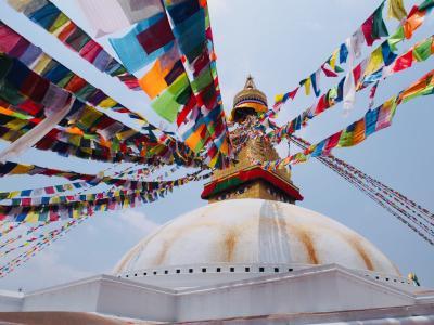 インド&ネパールの旅