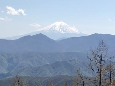 奥多摩探検隊、雲取山へ行く!《鹿肉と小池さん編》