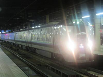 北海道旅行④ 札幌→函館・大沼
