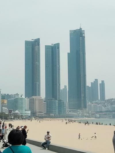 釜山ノープラン😁大学生2人と夫婦の4人家族旅行①